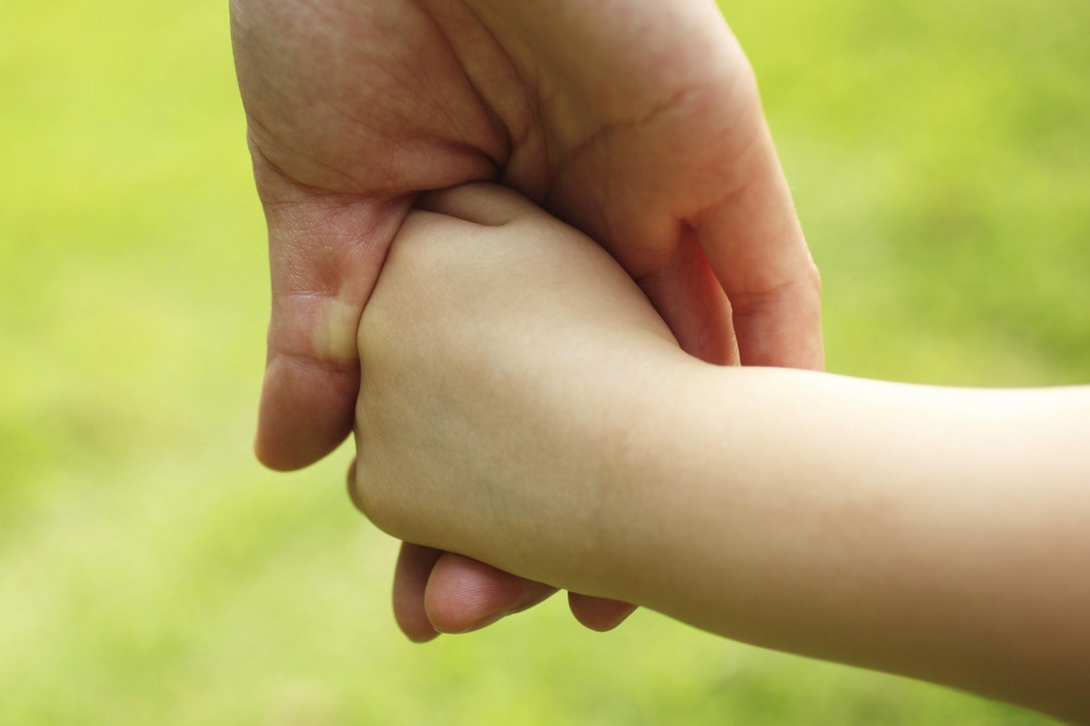 Методические рекомендации по государственной услуге «Организация приемных семей для граждан пожилого возраста и инвалидов»
